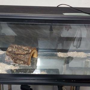 20 Gallon Reptile tank with cover for Sale in Miami, FL