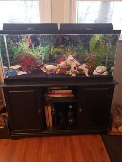 55g fish tank with stand and all accessories (empty- no fish) for Sale in Charlotte,  NC