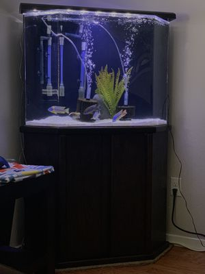 Aquarium fish tank acrylic 50 gallon for Sale in Marysville, WA