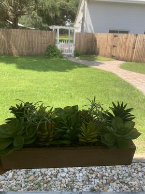 Plastic succulents for Sale in Mulberry, FL