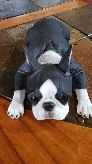 K-9 Kreations sandicast Boston Terrier figurine for Sale in Miami Springs, FL