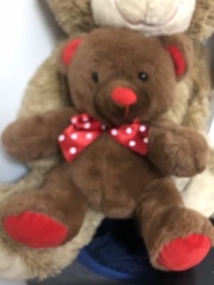 Teddy Bears for Sale in Hazelwood, MO