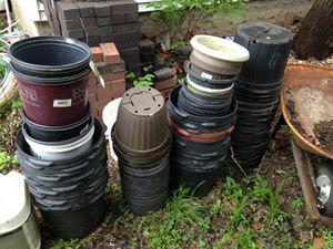 1-3 gallon flower pots for Sale in Augusta, KS