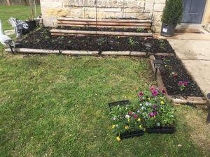 Gardening & Yard Service. Jardín & Yardas for Sale in Austin, TX