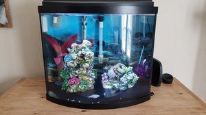 Bow Front Aquarium for Sale in Little Elm, TX