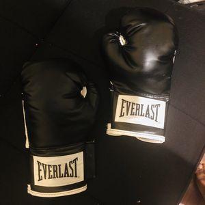 Everlast 12oz Boxing Gloves for Sale in Dania Beach, FL