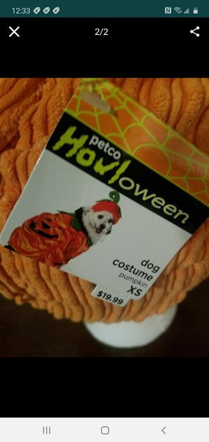 XS Dog Costume for Sale in Federal Way, WA