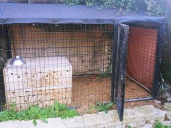 Dog Kennel Police Dog Very High Grade Heavy Cage for Sale in San Lorenzo,  CA