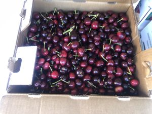 Sweet cherries for sale for Sale in Riverbank, CA