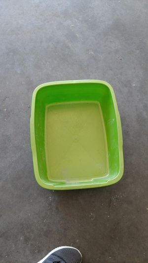 Cat litter pan for Sale in Rogers, AR