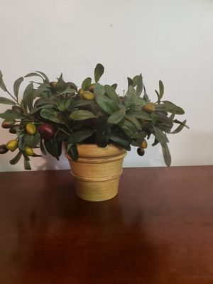 """Silk / Fake Olive Plant in 5"""" vase for Sale in Plantation, FL"""