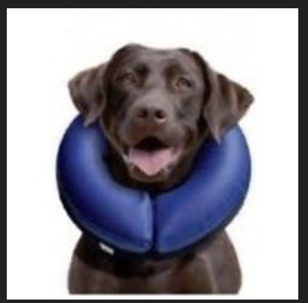 INFLATABLE PROTECTIVE MEDICAL PET COLLAR