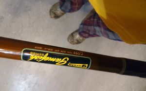 Garcia Gamefish Series C599 Trolling or Fishing Rod & Daiwa Reel for Sale in Silverdale, WA