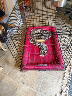 XXL Kennel for Sale in Edgewood, WA