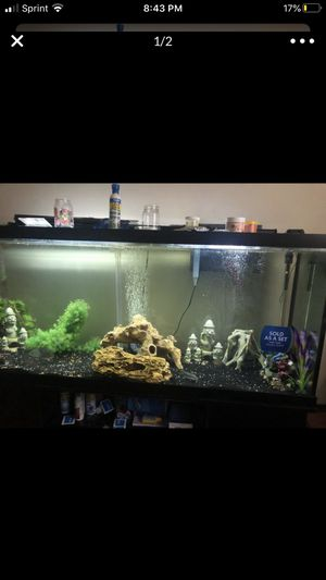 120g tank and stand!! for Sale in Clinton, MD