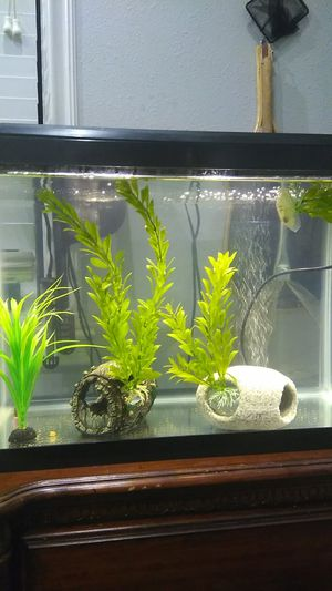 Fish Tank Decorations/ Accessories for Sale in American Canyon, CA