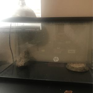 Tank 20gal for Sale in Brandon, FL