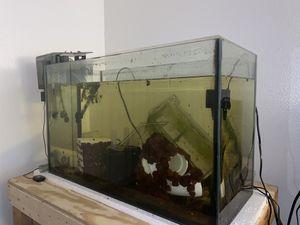 29 gallon complete setup for Sale in Mesa, AZ