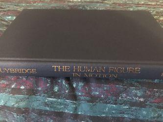 The Human Figure in Motion Eadweard Muybridge ISBN-10: 0486202046 ISBN-13: 978-0486202044 for Sale in Franklin Park,  IL