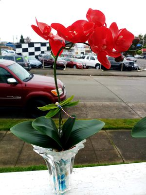 Beautiful handmade Orchids for Sale in Everett, WA