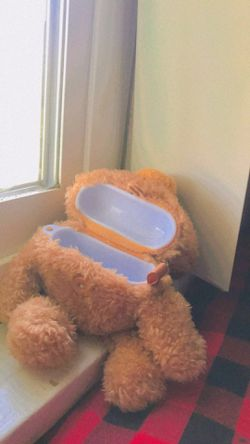 Teddy Bear AirPod Pro Case for Sale in Livingston,  CA