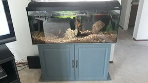 75 gallon freshwater fish tank for Sale in Lompoc, CA