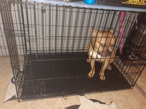 Dog cage for Sale in Waterbury, CT