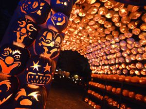 The Great Jack O'Lantern Blaze, Oct. 20 @ 8 p.m. for Sale in New York, NY