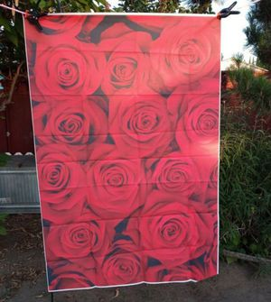New red roses backdrop 3ftx5ft for Sale in Whittier, CA