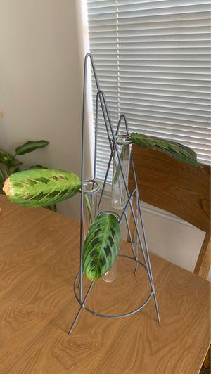 Magnolia Brand Plant\Stem Vase Decor for Sale in Dallas, TX