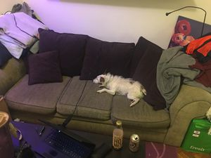 3-seat couch (cute pup not included) for Sale in Baltimore, MD