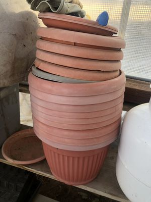 Plant pots for Sale in Acton, CA