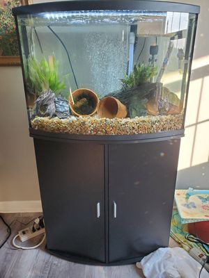 4x Aquariums & Fish & Suuplies!!!!! for Sale in Pleasant View, TN