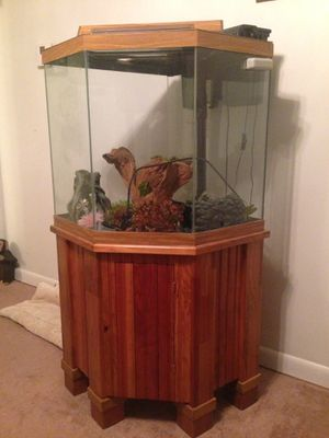 44 gallon pentagon fish tank!! for Sale in Everett, MA