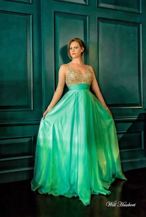 Ball Gown / Prom Dress for Sale in Chantilly, VA