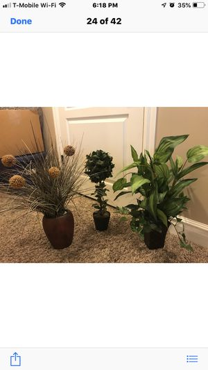 Several greenery plants in pots home decor for Sale in Draper, UT