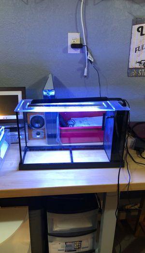 5 Gallon Fluval fish tank for Sale in Littleton, CO