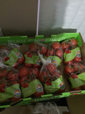 Asking only $16 for whole box of tomatoes for Sale in Pembroke Pines, FL
