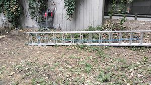 Werner 28 ft extension ladder for Sale in Seattle, WA