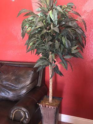 Fake Plant decoration for Sale in Chandler, AZ