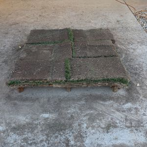 Fresh Sod for Sale in Bakersfield, CA