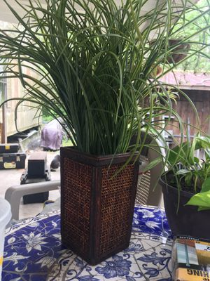 Fake table plant for Sale in Hudson, FL
