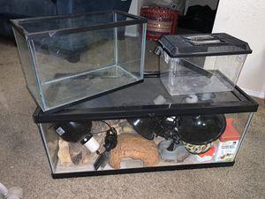 Reptile Tank bundle for Sale in Homestead, FL