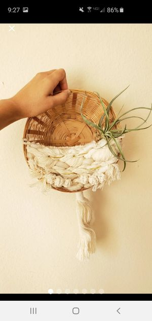 Boho succulent basket wall hanging macrame rope anthropologie free people bohemian art home decor for Sale in San Diego, CA