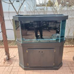 90 Gallon Half Hexagon Tank with Build-in Sump Pump, Stand, Glass Top, LED Light And Canopy for Sale in Levittown,  NY