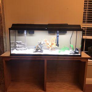 55 Gallon Fish Tank / Aquarium for Sale in Citrus Heights, CA