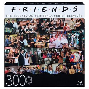 Friends The Television Series for Sale in Joliet, IL