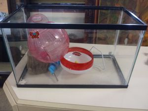 10 Gallon Tank for a hamster or small animal for Sale in Norfolk, VA