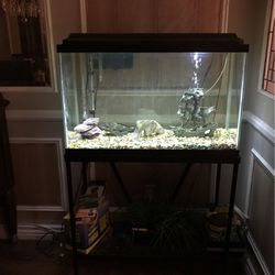 29-gallon Fish Tank for Sale in Los Angeles,  CA
