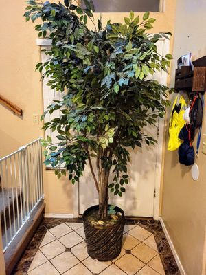 Free Artificial Tree for Sale in Mesa, AZ